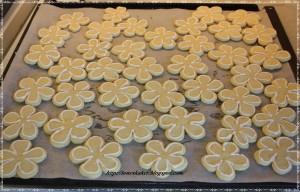 kake_cookies1